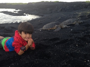 Punaluu Black Sand Beach, um refúgio das tartarugas.